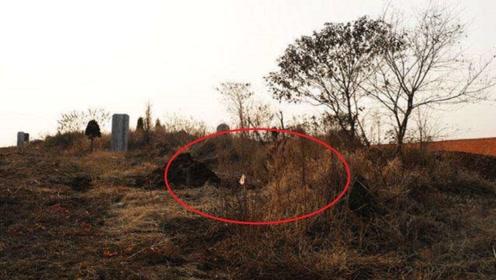 风水学:若祖坟旁有此物,子孙后代非富即贵,你家是不是?