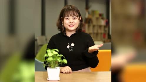【小可爱帮忙】手机微信卡怎么办?教你一招解决