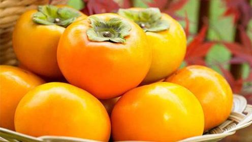 经常吃柿子的,赶快看看这视频,现在知道还不晚,别再忽视