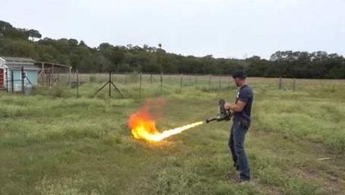 用强力胶封住蚁穴,再用喷火器去烧会发生什么?