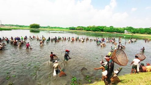 鱼塘开塘捕鱼啦,这下村民们可高兴坏了,啥捕鱼工具都用上了