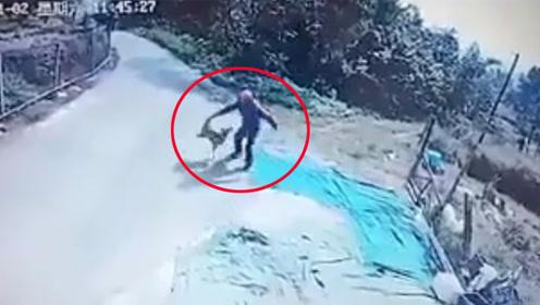 男子偷狗拽起狗尾巴朝地上猛摔 监控拍下残忍一幕