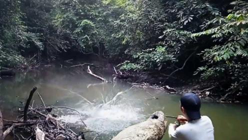 钓鱼:就在眼前,水面炸了