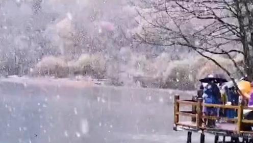 人间仙境!九寨沟开园后首次下雪,朋友圈都被雪景刷爆了!