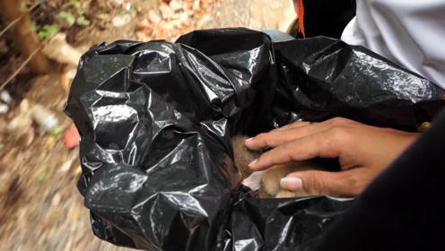 男子野外发现被丢弃的塑料袋,里面好像有东西,打开一看吓到了!