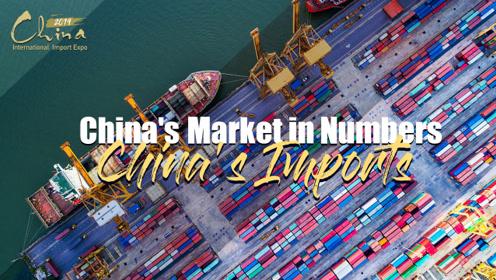 中国引力:数说中国进口