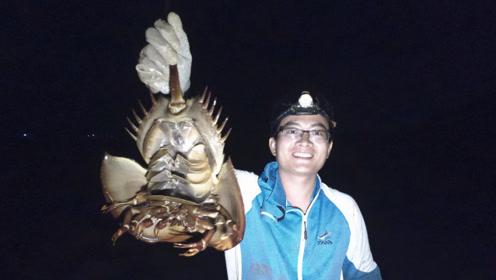 """渔夫刚挖出大螃蟹,转眼看到被渔网套住的""""国宝"""",赶紧解救放生"""