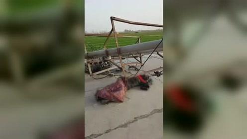 天降横祸!女子上班途中被刮倒电线杆砸中 当场昏迷不醒
