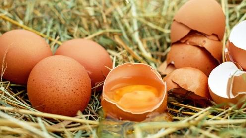 如今鸡蛋价格上涨,多地报价超12元1公斤,春节前还会涨价吗?