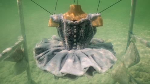 艺术家把裙子放进死海,5年后捞上来,冰晶美女惊艳众人!