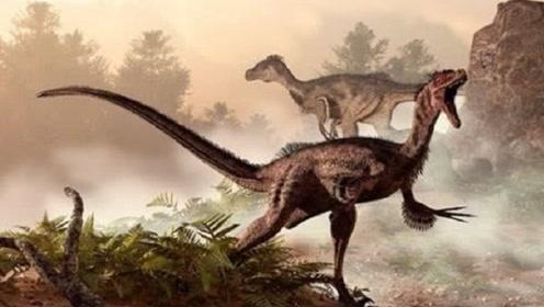 强悍的东北虎能在侏罗纪世界活多久?原来还需要这些条件!