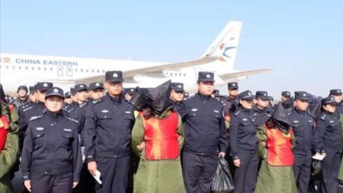 收网!河北警方捣毁一特大电信诈骗窝点,境外押解208名嫌犯回国