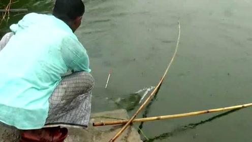 不得不承认,和竹竿相比,所有鱼竿都黯然失色了