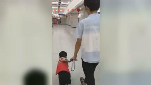 争议再起!盲人带导盲犬上地铁被拒