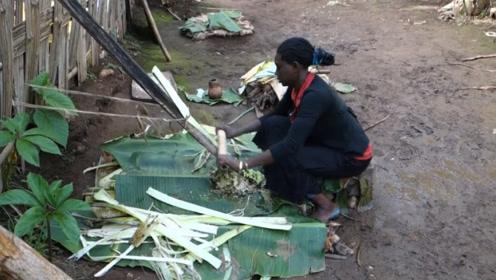 """非洲""""最不正经""""的香蕉树,不结果实却养活了上千万人!"""
