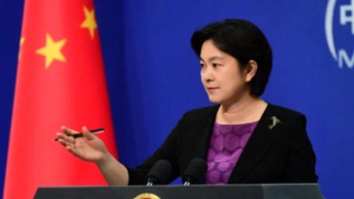 华春莹发声:这些背叛祖国的明星,禁止使用中国护照,看看都有谁!