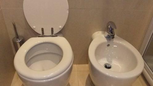 欧美厕所里的2个马桶,千万别选错,不然会尴尬