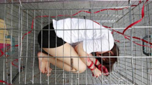 只要在笼子里待着,就能拿千万年薪,却为何至今无人能完成挑战?