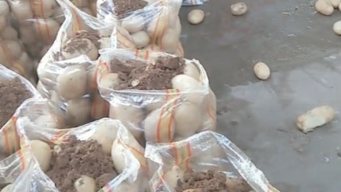 镜头拍下这一幕,原来我们买的土豆里的土,是这样来的!