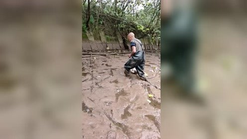 男子现场抓甲鱼,真是第一次见!