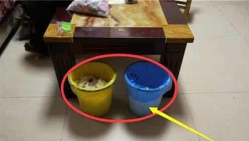 家居风水:不论你家多有钱,垃圾桶别放这3个地方,有钱人早改了