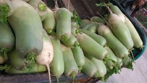 萝卜应季上市,只需死记1个部位,保证你买的萝卜又鲜又脆,实用