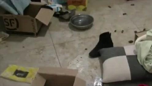 女租客欠房租失联,屋内根本没有落脚地,电器还被洗劫一空!