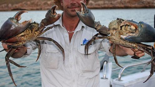 生活在海边就是好,常年可以来捕鱼捕蟹,而且还不用花钱买
