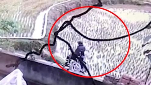 老人坐轮椅翻下坎受伤,坚称面包车司机逃逸,看完监控才知他的无耻!
