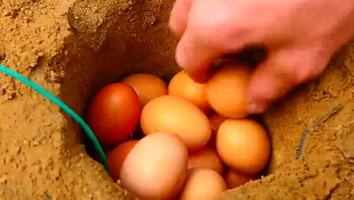 鞭炮炸鸡蛋你见过吗?外国小哥亲自实验,网友:这才是真正的蛋花