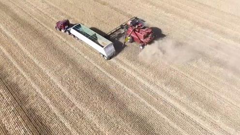 美国农业机械化水平高,一人一年耕种2700亩,田间有新型拖拉机
