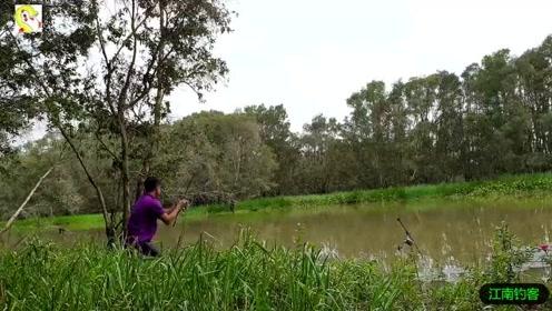 河边的钓竿放下已久,小伙看到钓竿有点动静立马跑去拉钓收获一条大鱼