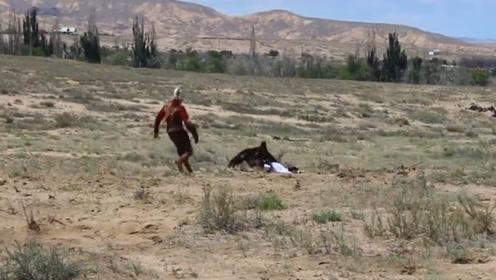 饥饿的老鹰抓住一名小女孩,工作人员上前解救,镜头拍下全过程