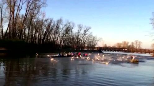 游客划船游玩,突然发现河中大鱼不对劲,下一秒让人无语