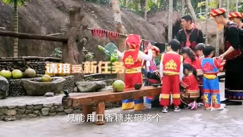 阿拉蕾让嗯哼用口香糖砸开椰子!网友:不可能的啊!