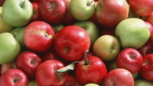 苹果加它常吃不仅润肺止咳,还稳定血糖