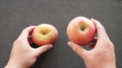 买苹果不是越红越好!只需看这里,保证苹果又甜又脆,一挑一个准