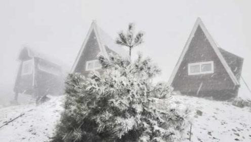 台州初雪有点猛!括苍山大雪皑皑,一秒穿越到童话世界