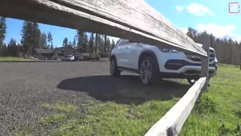 两部车整体对比的话,我觉得奔驰略胜一筹