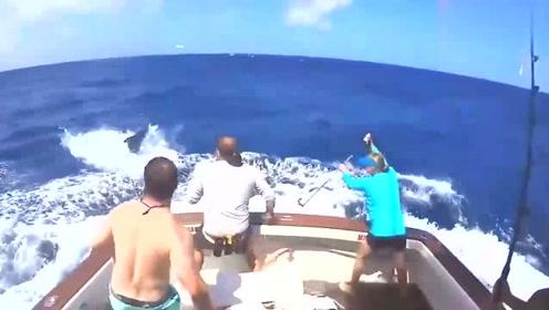 钓鱼钓出一条庞然大物,船都被这家伙拖得摇摇欲坠,太可怕了