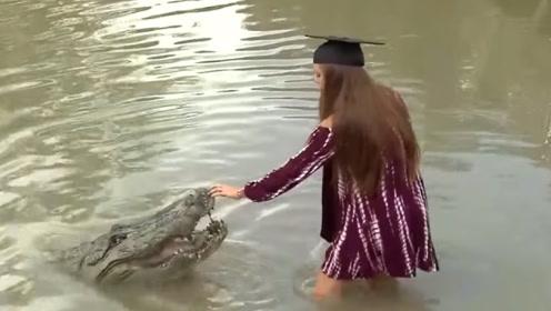 美女水中发现鳄鱼,主动伸手用肉喂,结果让人很意外