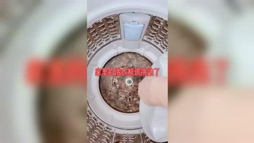 家里的洗衣机该洗洗了