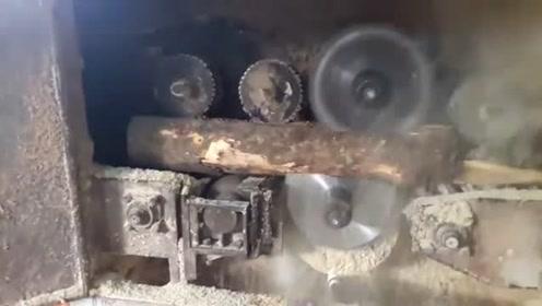 实拍越南木材加工厂,网友:看着机器有点落后了!