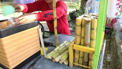 甘蔗在印尼都这样卖的吗?砍成一截截的洗净后直接榨汁,好喝好玩