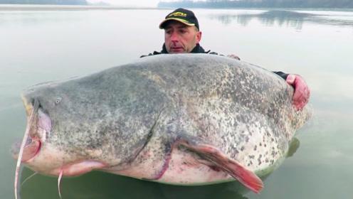 男子湖中钓获超级大鱼,抱起来比他还大,够吹一辈子的了!