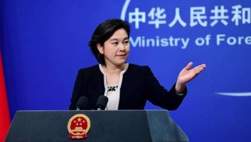西媒对新疆反恐纪录片集体失声 华春莹现场质问外国记者无人举手