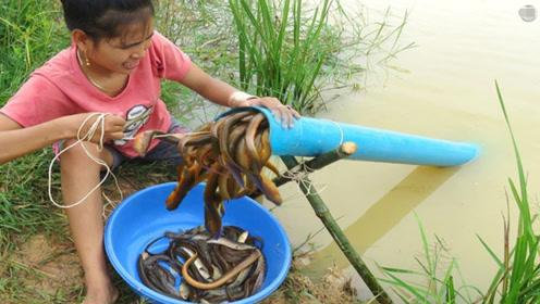 村姑发明捕鱼大招,仅凭一根水管,就收获了一大桶的惊喜!