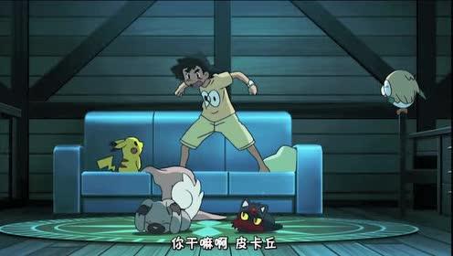 精灵宝可梦:皮卡丘居然是这样叫小智起床!太逗了!