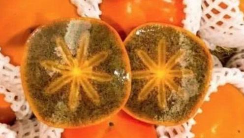 一斤柿子就要上百元?日本纪川柿有何特别之处,网友:还是东北的冻柿子好吃