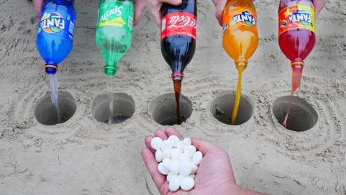 五种碳酸饮料同时加入曼妥思,哪个会喷的最高呢?结果有点意外!